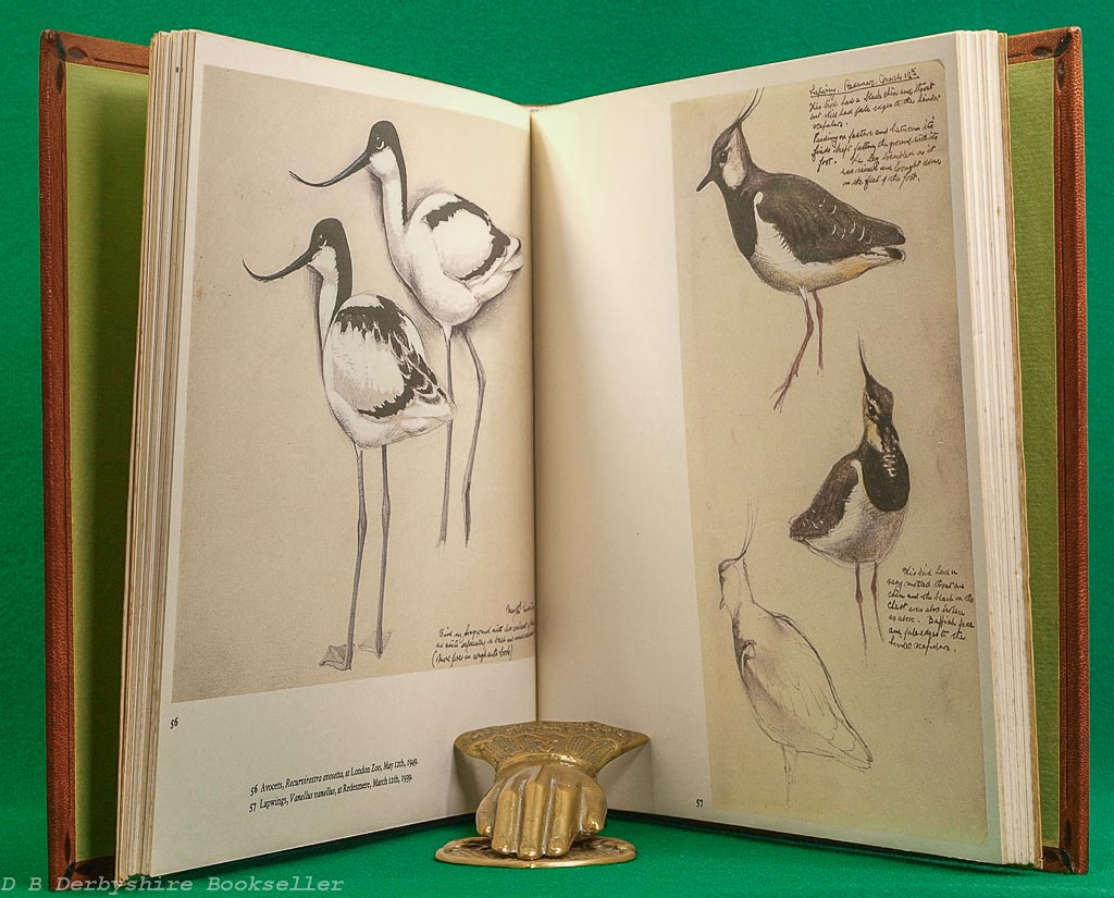 A Sketchbook of Birds | C. F. Tunnicliffe | Gollancz, 1st edition 1979 | Full Leather Binding
